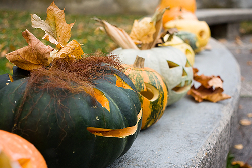 Various pumpkins seasonal decorating the outside of a home in the autumn months